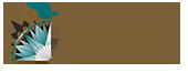 Adelaar Cruises Logo