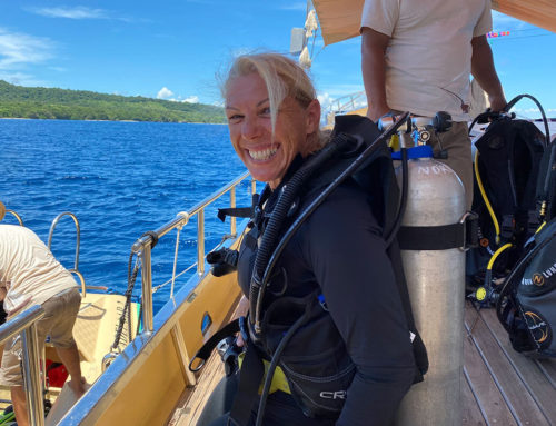 Working, sailing and diving with Adelaar