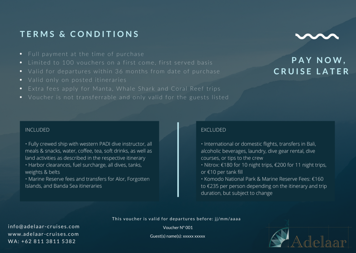 Discounted travel vouchers for diving cruises