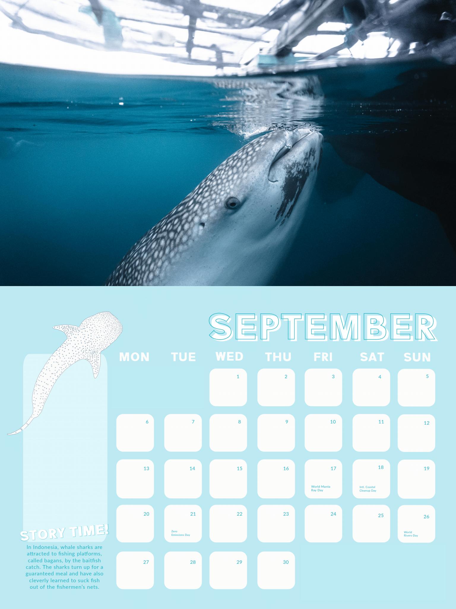 Whale Shark Calendar 2021