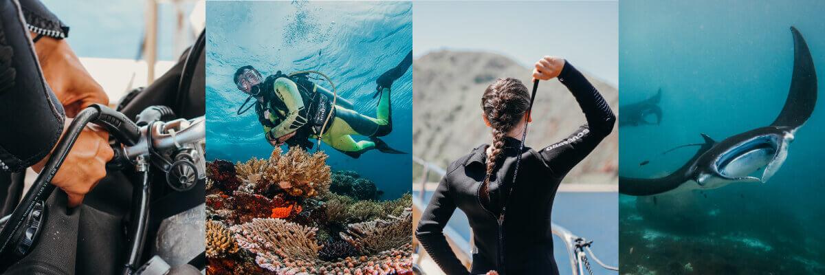scuba diving on a liveaboard