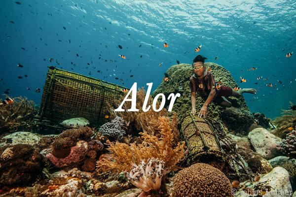 croisière de plongée Alor