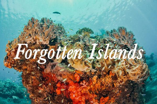 croisière de plongée Forgotten Islands