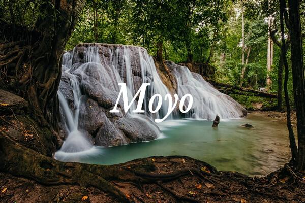 croisière de plongée Moyo