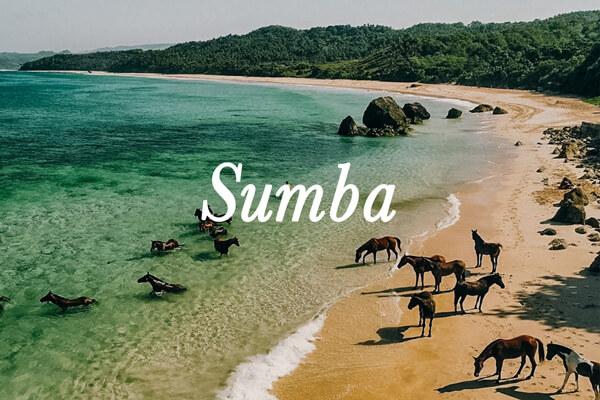 croisière de plongée Sumba