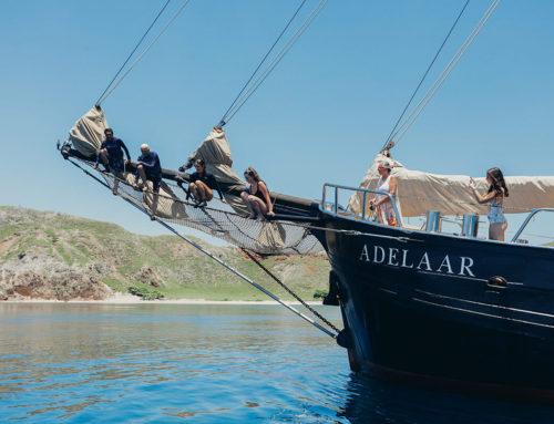 La dolce vita onboard Adelaar