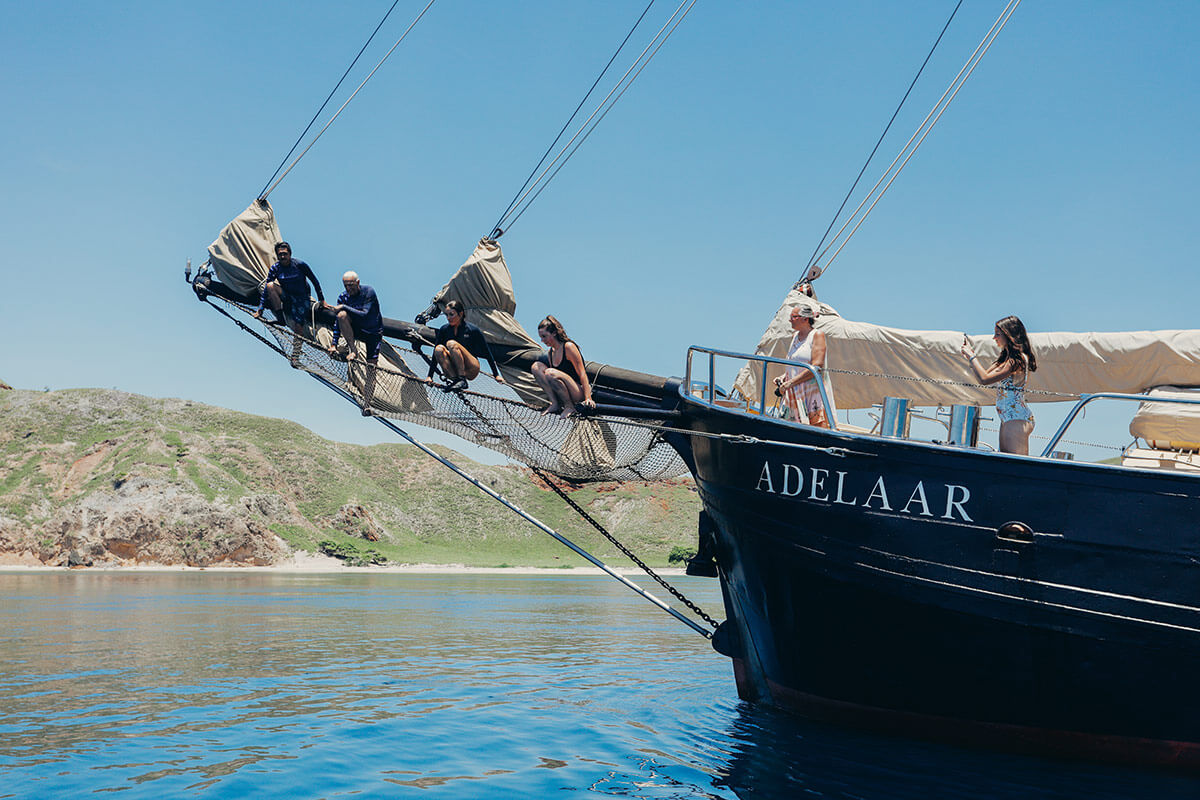 Adelaar Cruises